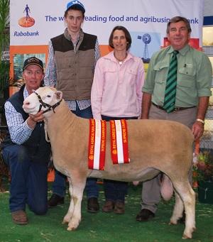 2013 Royal Adelaide Show Top Price Poll Dorset Ram